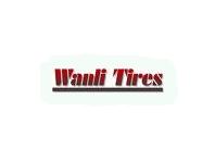 wanli autógumi gyártó logo